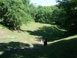 17114 Chapman T Trail - Photo 12