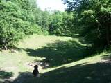 17114 Chapman T Trail - Photo 14