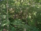 17114 Chapman T Trail - Photo 15