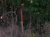 17114 Chapman T Trail - Photo 5