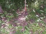 17114 Chapman T Trail - Photo 7