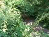 17114 Chapman T Trail - Photo 9