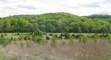 0 Lot 7 At Dry Fork Meadows - Photo 3
