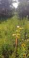 0 2.674 Ac On Pear Tree & Mennem - Photo 3