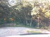 9232 Kerkhoff Road - Photo 5