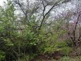 1115 Hackberry Drive - Photo 1