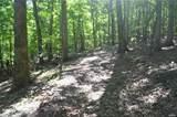 16 Maple Tree - Photo 1