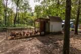5375 Georgia Creek - Photo 44