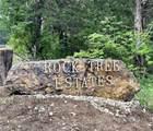 18000 Rock Tree - Photo 1