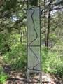 18000 Rock Tree - Photo 3