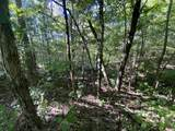 0 High Knob Road - Photo 4