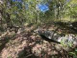 0 High Knob Road - Photo 7