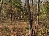 4900 Tree Ridge Trail - Photo 12