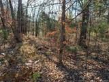 4900 Tree Ridge Trail - Photo 2