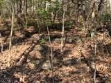 4900 Tree Ridge Trail - Photo 3