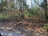 4900 Tree Ridge Trail - Photo 5