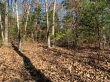 4900 Tree Ridge Trail - Photo 6