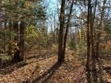 4900 Tree Ridge Trail - Photo 7