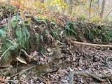 4900 Tree Ridge Trail - Photo 8
