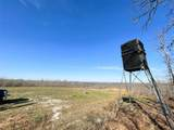 44 Cedar Ford - Photo 14
