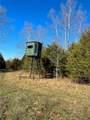 44 Cedar Ford - Photo 15