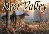 31 Deer Valley Court - Photo 8