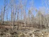 116 Big Tree Trail - Photo 1