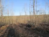 155 Pine Meadow Trail - Photo 1