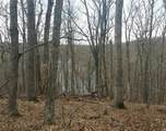 1 Boone Ridge Trail - Photo 7