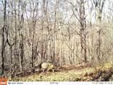 1213 Poor Farm Hollow - Photo 33
