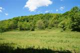 1213 Poor Farm Hollow - Photo 47