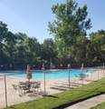 11911 Villa Dorado Drive - Photo 22