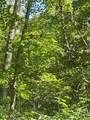 8814 Sorrell Woods Road - Photo 15