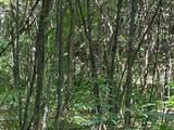 8814 Sorrell Woods Road - Photo 17