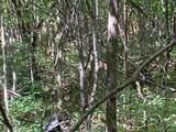 8814 Sorrell Woods Road - Photo 18