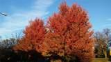5224 Chouteaus Bluff - Photo 41
