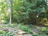 4 Steinmeyer Woods - Photo 8