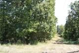 1 +/- Acre Dogwood - Photo 6