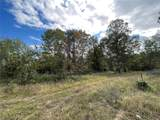 15 Woodland Heights - Photo 1