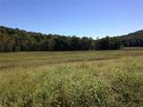 12455 County Road 261 - Photo 17