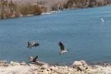 1568 Lake Sherwood - Photo 7