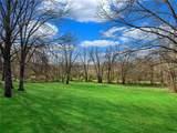 1101 Quatto Hill - Photo 3