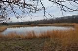 135 Castor River - Photo 16