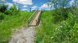 1188 Horsetail Woods Court - Photo 6