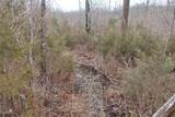 0 9.04 Acres - Dittmer Road - Photo 11