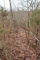 0 9.04 Acres - Dittmer Road - Photo 21