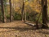 0 Signal Hill Terr - Photo 5