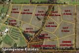 11 Springview Estates - Photo 3