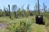 911 Deer Ridge - Photo 34