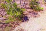 0 Boone Woods Trail - Photo 12